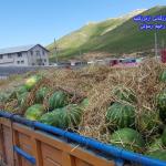 پروژه ارسال هندوانه به مقصد اربیل